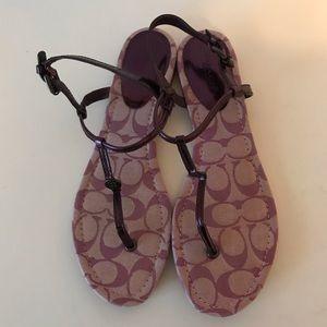 Coach Sandals, purple, 9.5